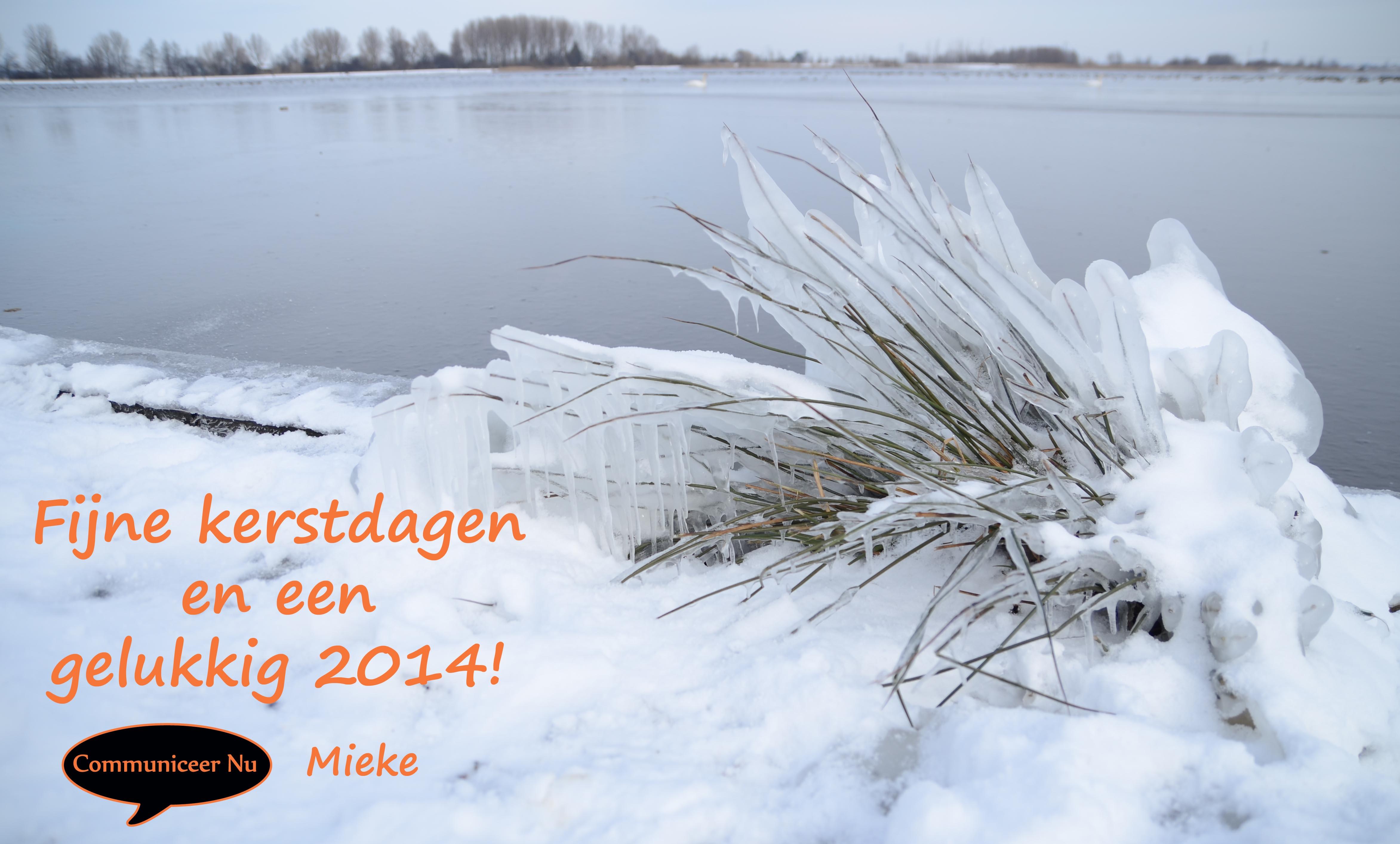 Kerstwens 2013